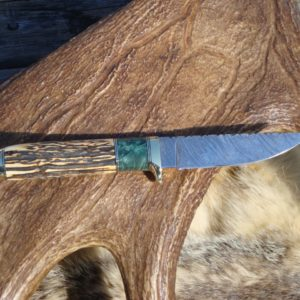 INDIA STAG WITH MAPLE BURL WOOD HANDLE DAMASCUS BLADE HUNTER